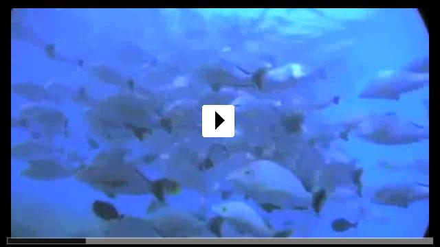 Zum Video: The Ultimate Wave Tahiti 3D