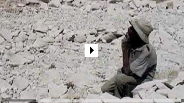 Zum Video: Heart Of Stone