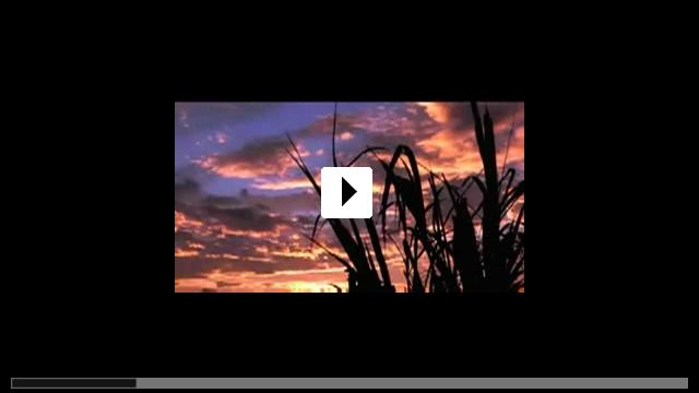 Zum Video: Das Meer kommt