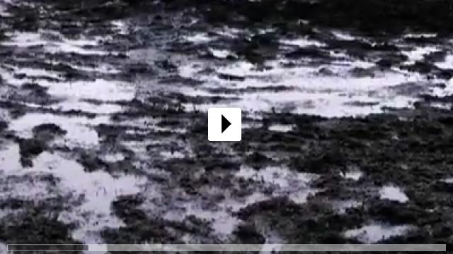 Zum Video: Walhalla Rising
