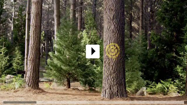 Zum Video: Yogi Bär (3D)
