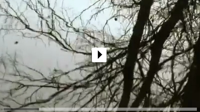 Zum Video: Im Garten der Klänge - Nel Giardino dei Suoni