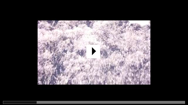 Zum Video: Der Fluch von Darkness Falls