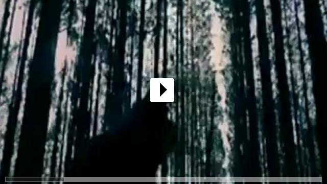 Zum Video: Die Erpresser