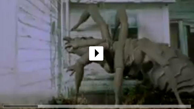 Zum Video: Arachnia