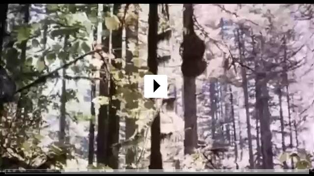 Zum Video: Die Stunde des Jägers