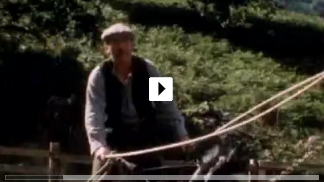 Zum Video: Animal Farm