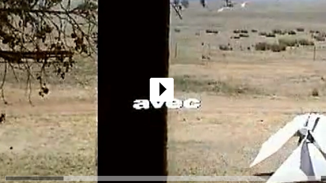 Zum Video: Arizona Dream