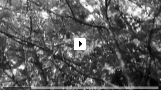 Zum Video: Berlin- Alexanderplatz
