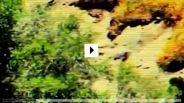Zum Video: Evidence