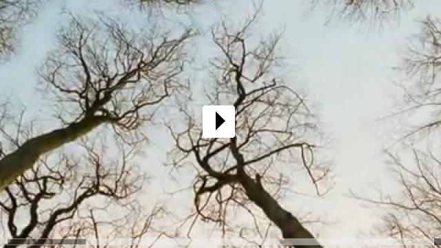 Zum Video: Das Blaue vom Himmel