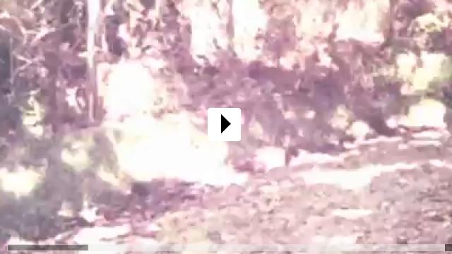 Zum Video: The Victim