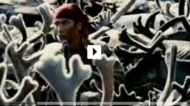 Zum Video: Der Junge und der Wolf