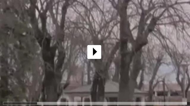 Zum Video: The Hamiltons