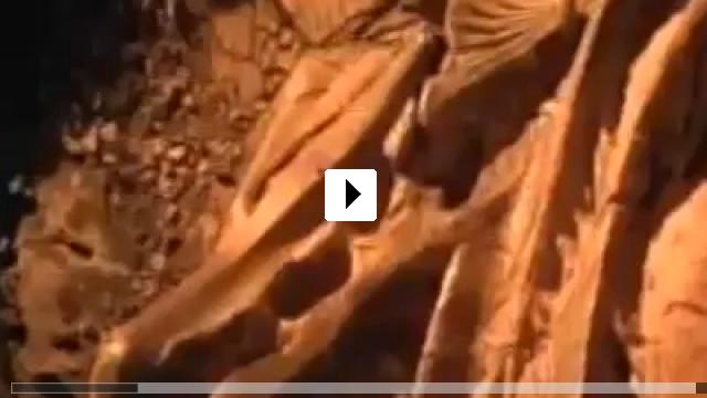 Zum Video: Das verfluchte Grab