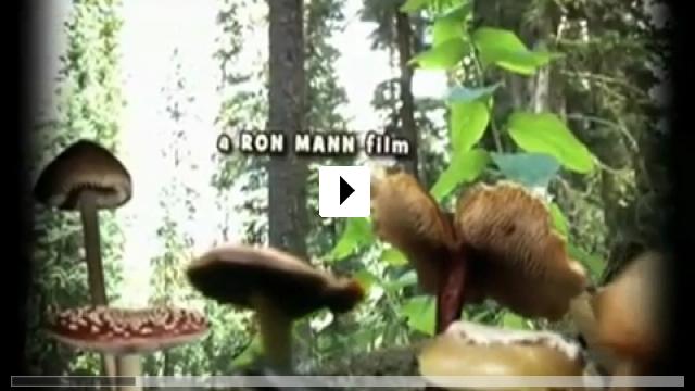 Zum Video: Know Your Mushrooms
