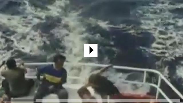 Zum Video: Alamar