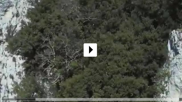 Zum Video: Die Höhle der vergessenen Träume