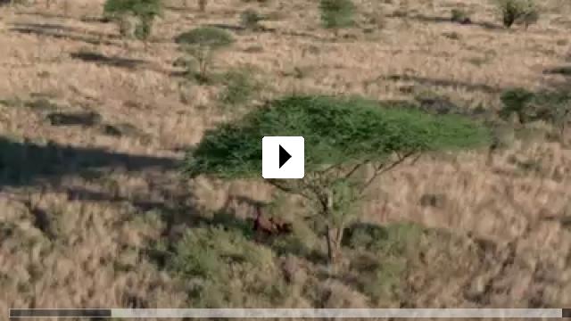Zum Video: Unser Leben
