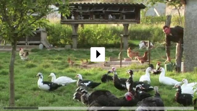 Zum Video: Urville