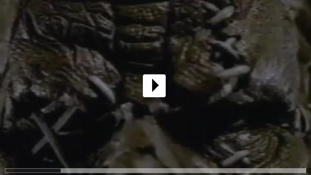 Zum Video: Scarecrow Slayer