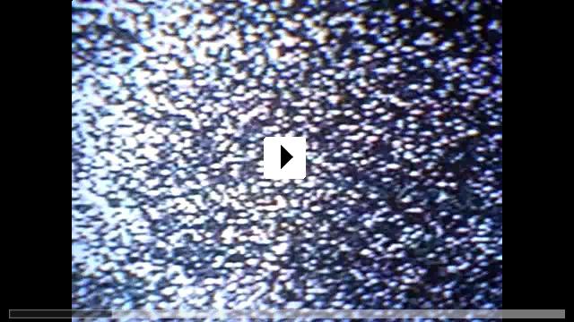 Zum Video: Haus der 1000 Leichen
