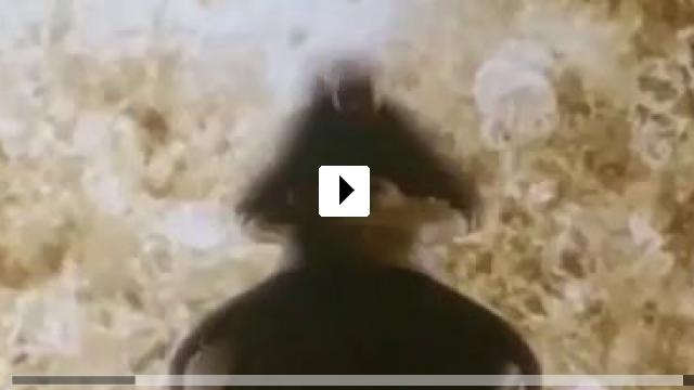 Zum Video: Octalus - Der Tod aus der Tiefe