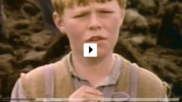 Zum Video: The Butcher Boy
