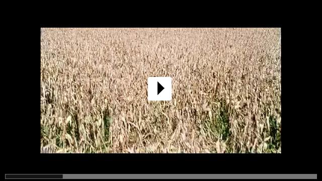 Zum Video: Unterwegs nach Cold Mountain