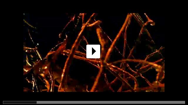 Zum Video: Die Purpurnen Flüsse 2 - Die Engel der Apocalypse