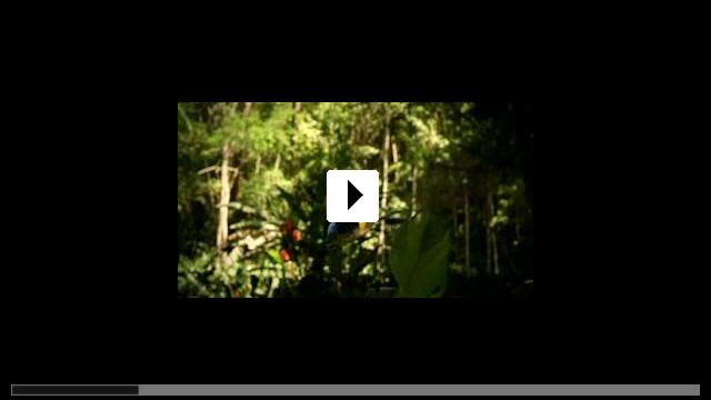 Zum Video: Böse Zellen