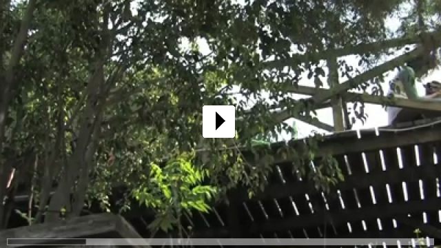 Zum Video: Entrance
