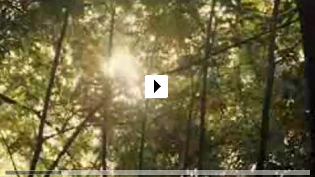 Zum Video: Prey - Die Jagdsaison ist eröffnet!
