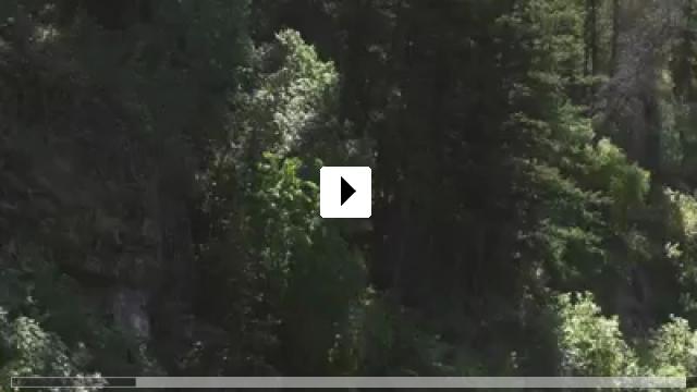 Zum Video: Orcs!
