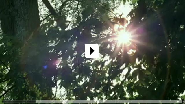 Zum Video: Weh mir