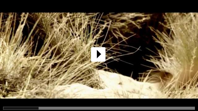 Zum Video: Blackthorn