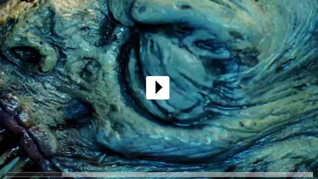 Zum Video: Scream of the Banshee