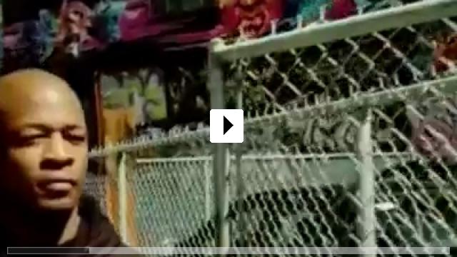 Zum Video: The Striking Truth