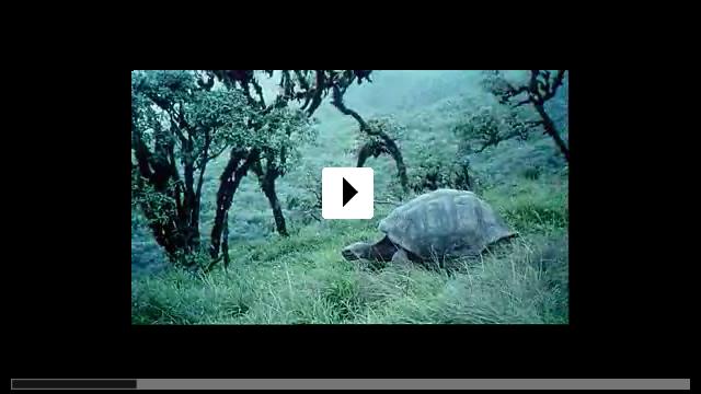 Zum Video: Genesis