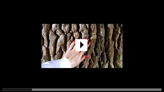 Zum Video: En Garde