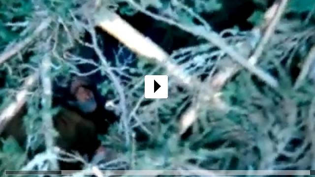 Zum Video: Paradox Soldiers – Die Hölle des Krieges