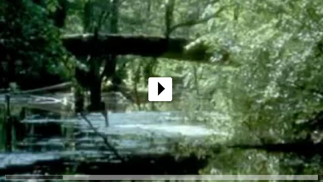 Zum Video: Das Biest