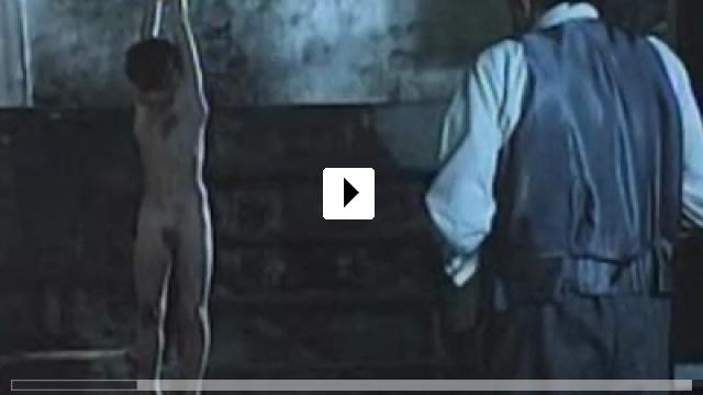 Zum Video: Im Glaskäfig