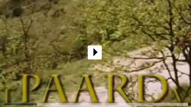 Zum Video: Wo ist Winkys Pferd?