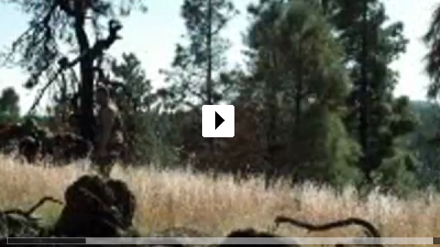 Zum Video: Kein Weg zurück