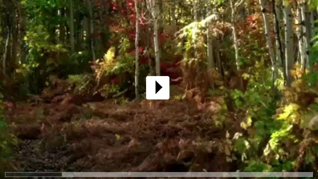 Zum Video: Darling Companion