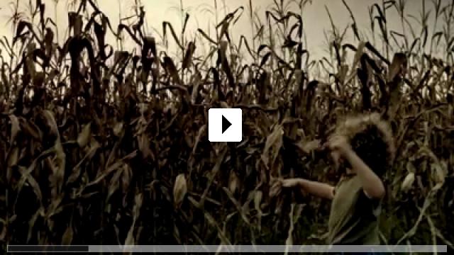 Zum Video: The Fields