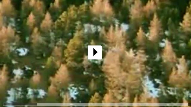 Zum Video: Signers Koffer - Unterwegs mit Roman Signer