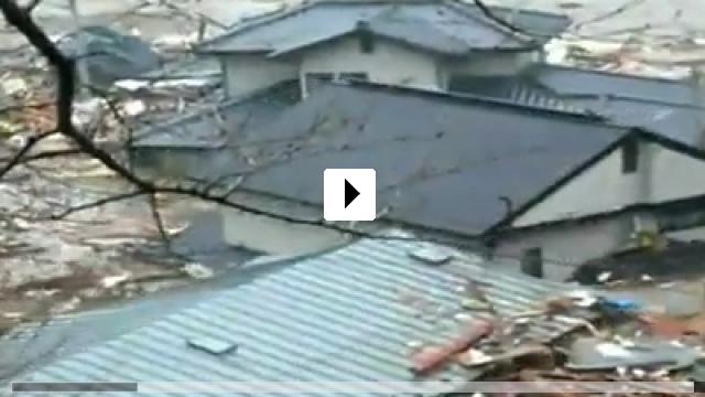 Zum Video: The Tsunami and the Cherry Blossom