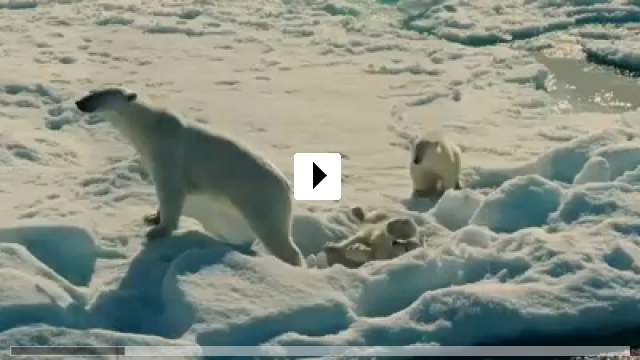 Zum Video: To the Arctic 3D